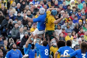 A minister was accused of misbehaving at the Australia-Italy match. Photo / Dean Purcell