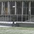Hail on the Parliament Buildings. Photo / Kim