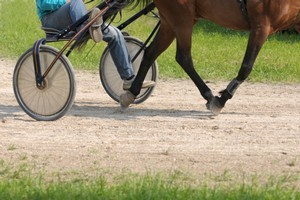 Another harness racing meeting has been abandoned this week. Photo / ThinkStock