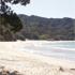 New Chum's Beach on the Coromandel Peninsula back in New Zealand is still a favourite. Photo / Rick McKinley