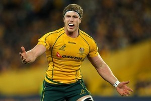The loss of David Pocock was a blow for the Wallabies. Photo / Getty Images