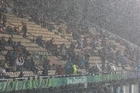 Rain on the game. Photo / Richard Robinson.