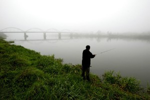 Waikato-Tainui will be able to issue customary fishing authorisations from Thursday. Photo / Dean Purcell