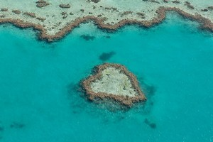 The Great Barrier Reef wouldn't be the same without its heart, a part of Hardy Reef, which was discovered in 1975 by one of Air Whitsunday's seaplane pilots. Photo / Thinkstock