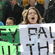 An Irish fan displays a message during the side's win over Australia. Photo / Natalie Slade