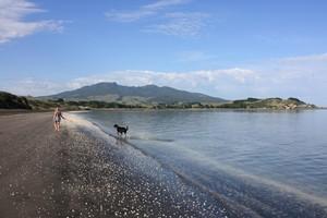 Mt Karioi, a dormant volcano, dominates Raglan's sparkling landscapes. Photo / Paul Rush