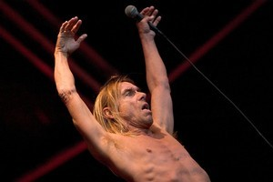 Iggy Pop rocked the Big Day Out back in 2006 and he's back this year for another go. Photo / Richard Robinson