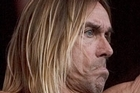 Iggy Pop. Photo / NZ Herald