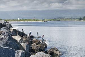 Whitebaiters near Westport Harbour. Photo / Petr Hlavacek