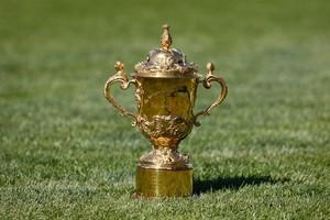 The Webb Ellis Cup. Photo / Sarah Ivey
