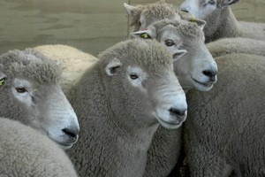 Kiwis reckon smells from the farm are right up there. Photo / APN