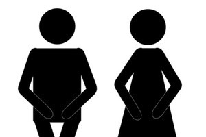Passengers will be given plastic bags to urinate in in 'extreme emergencies'. Photo / Thinkstock