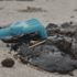 Clean up of the thick oil globs lining the beach begins. Photo / Gemz Photography