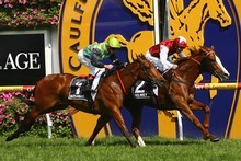 Helmet earns a Cox Plate start by courageously holding off Manawanui to win the Caulfield Guineas on Saturday. Photo / Getty Images 