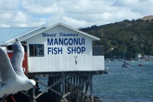 Owners of homes and businesses such as the 'world famous' Mangonui Fish Shop - built over water may be exempt from paying rates, under the new Marine and Coastal Area Act. File photo