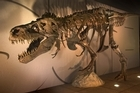 The T Rex dinosaur skeleton named Sue. Photo / supplied