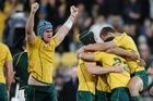 Wallaby players are jubilant after their win over South Africa. Photo / Mark Mitchell