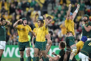 The Wallabies celebrate at the final whistle in the third quarter-final against the Springboks. Photo / Paul Estcourt
