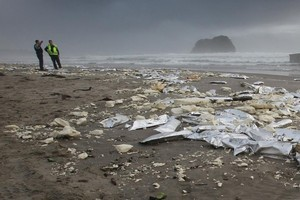 The clean-up had so far cost around $4 million. Photo / APNZ