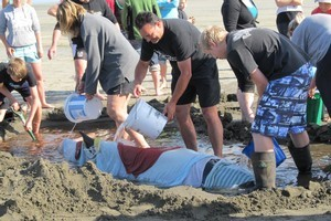Volunteers and Department of Conservation staff help tend to a pygmy sperm whale which was stranded on Ohope Beach this morning. File photo