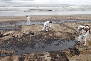 Whether the company that built the stricken Rena, which has led to massive clean-up efforts on Bay of Plenty beaches, would have passed an ethical assessment remains to be seen. Photo / Mark Mitchell