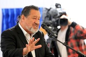 Maori Party co-leader Dr. Pita Shaples. Photo / APN
