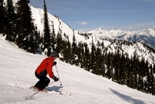 Fernie Alpine Resort in British Columbia, Canada, is just one of the skifields celebrating its 50th anniversary this northern hemisphere winter. Photo / Tourism BC, David Gluns