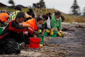 Volunteers help clean up Papamoa Beach. Photo / APN