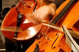 The Auckland Philharmonia Orchestra. File photo / Steven McNicholl