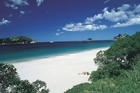 Hahei's sweeping crescent of brilliantly-white sand is a summer holiday hot spot. Photo / Tourism Coromandel