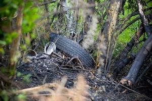 Crash scene on Ararimu Road, Ramarama. Photo / Jason Dorday.