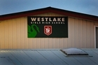 Westlake Girls High School. Photo / Kenny Rodger