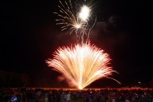 Fireworks. Photo / APN