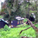 Mandara Huts in the rainforest on Kilimanjaro. Photo / Vanessa James