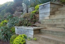 Wooden steps fit in perfectly with Larnach Castle's Out of Africa garden. Photo / Meg Liptrot