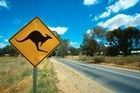 Departures to Australia have climbed back steeply to a new peak of 48,800 in the year to September. Photo / Thinkstock
