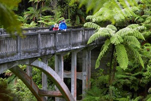 The Bridge to Nowhere can be reached from Mangapurua Landing on the Whanganui River. Photo / Tourism Ruapehu