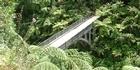 View: Whanganui River: Downstream from Taumarunui