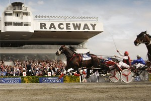 Jim Curtin drives Terror To Love to win the NZ Trotting Cup Day at Addington Raceway. Photo / Getty Images