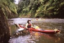Colin leads the way downstream. Photo / Paul Rush
