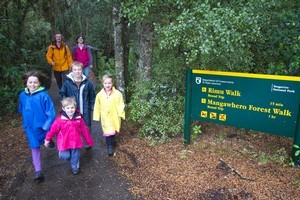 The forest walks around Ohakune are suitable for littlies' legs and sedentary adults to cope with. Photo / Bruce Nicholson