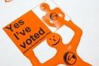 Election. Photo / Richard Robinson