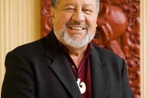 Pita Sharples is delighted National and the Maori Party have similar policies on Whanau Ora. Photo / Supplied