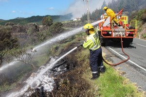 Kerikeri firefighters hosing down roadside scrub where the fire started. Photo / Northern Advocate
