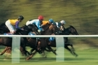Horse racing tips by phone - a hot investment? Photo / Thinkstock
