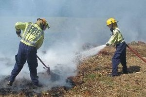 Kerikeri firefighters used shovels and hoses to put out a fire on a Wiroa Rd lifestyle block yesterday. Photo / Peter De Graaf/Northern Advocate