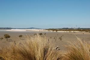 Pollen Island (Motu Manawa) Marine Reserve. Photo / Supplied