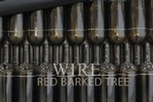 Cover of the Wire album Red Barked Tree. Photo / Supplied
