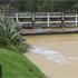 Flooding at Long Bay, Auckland. Photo / Sage Lubbe