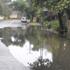 Flooded streets in Mt Eden. Photo / Esther Goh